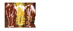Asociacion de Cavall Pirinenc Catalán